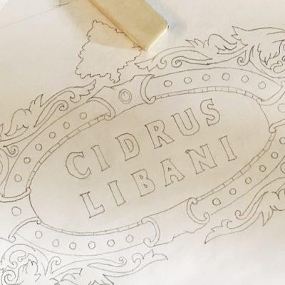 Logo Designer Toronto