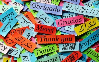 Multilingual Website Design Toronto