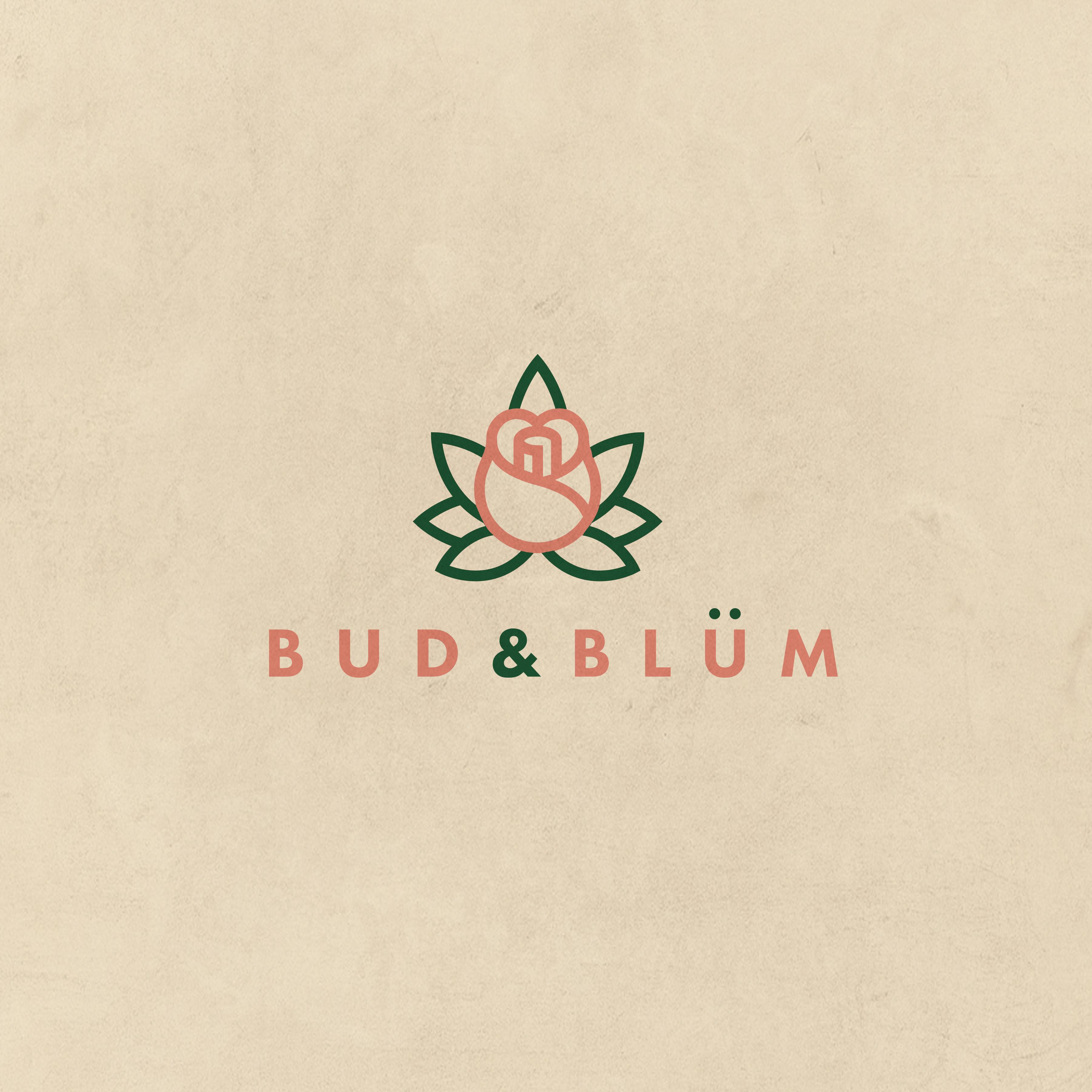 ANerdsWorld_Logos_BudandBlum