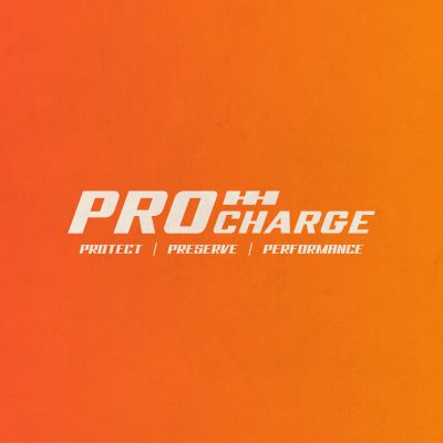 ANerdsWorld_Logos_Procharge